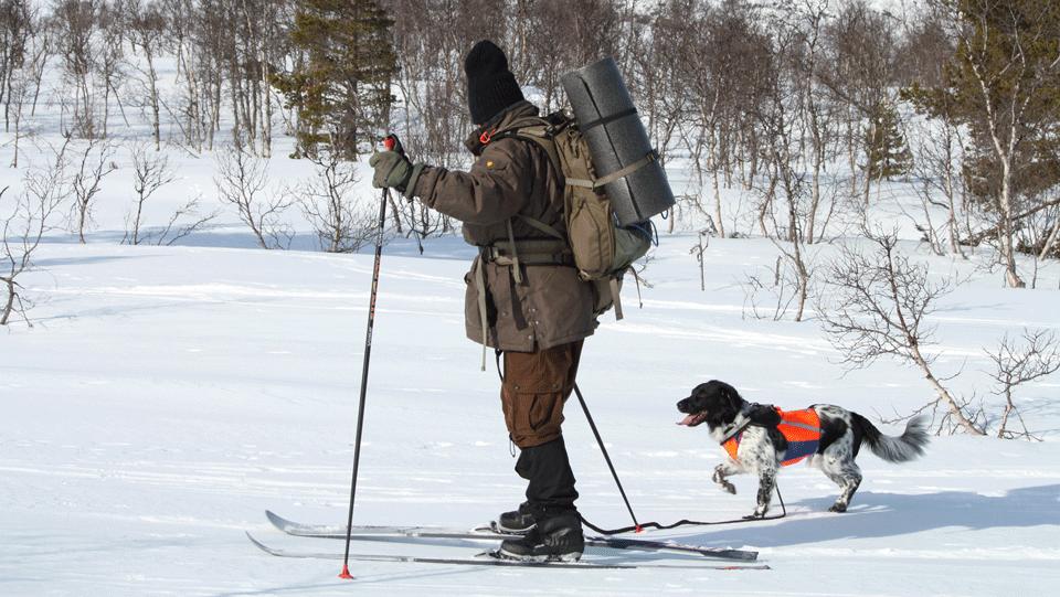 Kurs i «Føring av hund i fjellet»