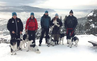 Turtreff vinter 2018