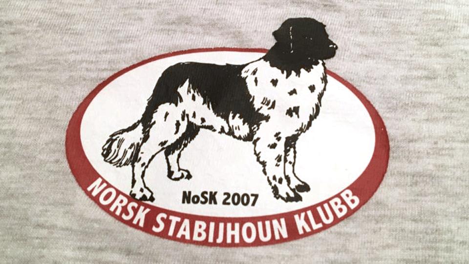 Strykemerker med klubb-logo
